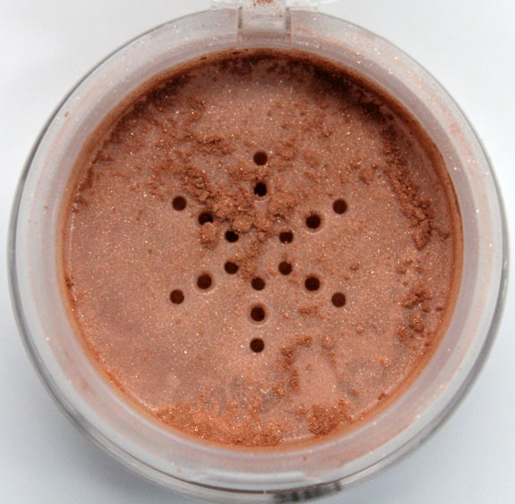 Wet n Wild Ultimate Minerals Bronzer 4
