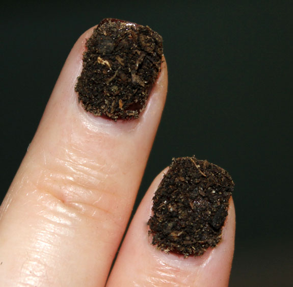 Potting Soil Nails 2