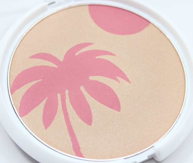 Wet n Wild Color Icon Bronzer & Blush Hold me Close