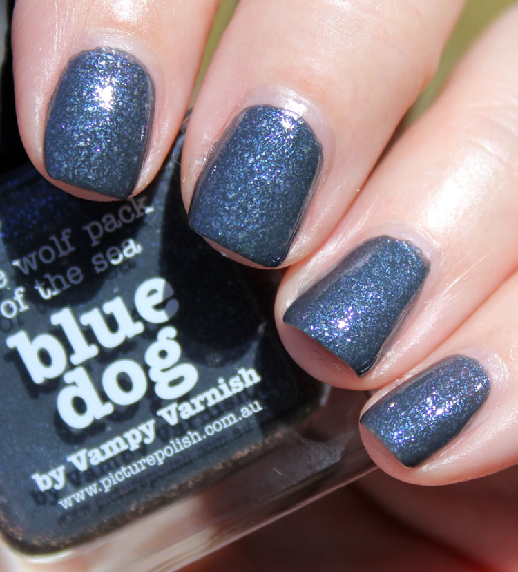 piCture pOlish Blue Dog-2