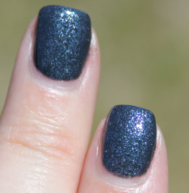 piCture pOlish Blue Dog-4