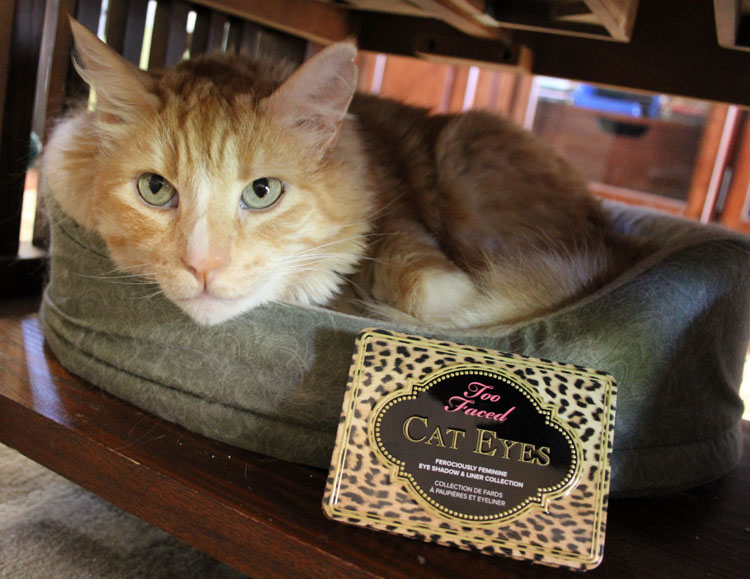 Too Faced Cat Eyes Ferociously Feminine Eye Shadow and Liner Collection-4