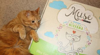 Muse by Purina-2